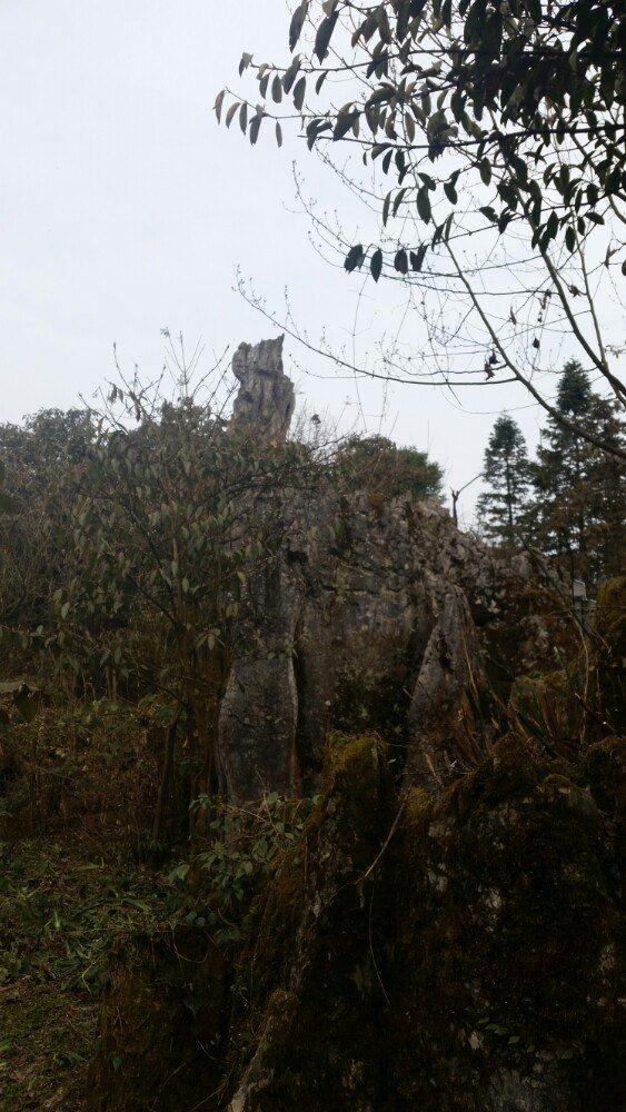 Huaying Mountain Stone Forest