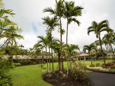 夏威夷熱帶植物園