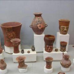 陶器博物館用戶圖片
