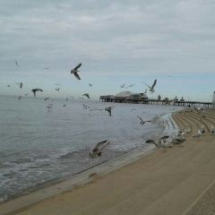 Blackpool Pleasure Beach User Photo