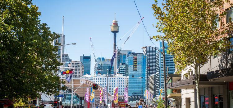 Sydney Tower1