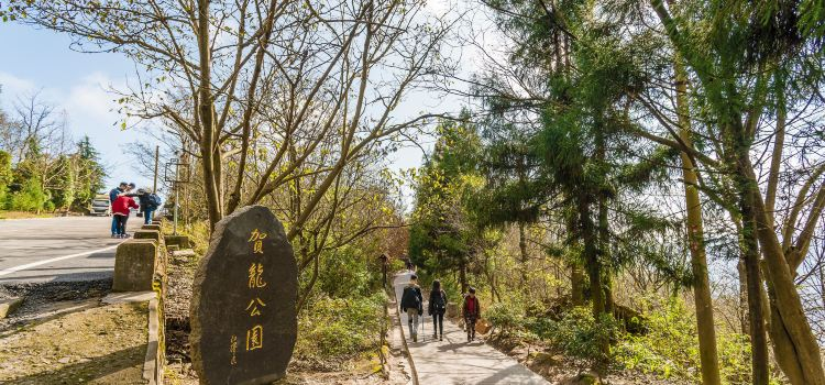 賀龍公園2