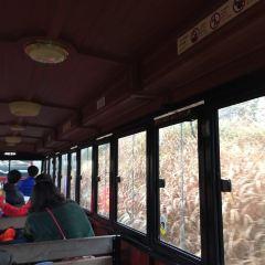 Eco Land Theme Park User Photo