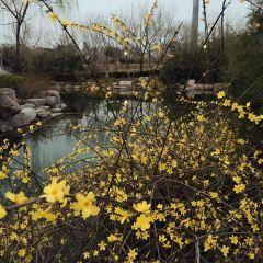 滎陽植物園用戶圖片