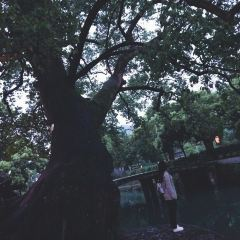 리수이 옛길 여행 사진