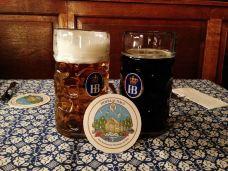 皇家啤酒屋-慕尼黑-蝈蝈向南飞