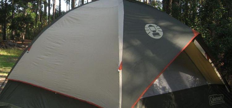 Camp Disney3
