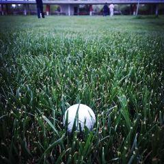 Guoke Golf User Photo