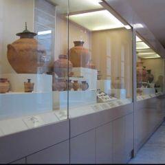 凱拉米克斯博物館用戶圖片