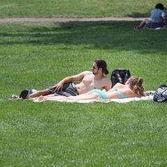 Great Lawn User Photo