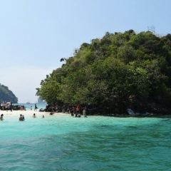 Moh Island User Photo