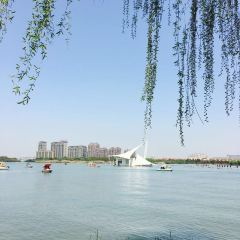Jiyang Lake Ecological Park User Photo