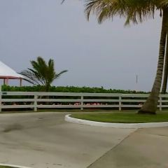 Arecibo Lighthouse & Historical Park用戶圖片