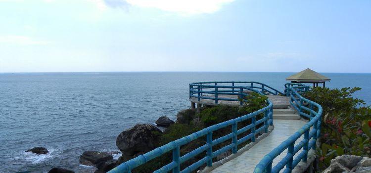 West Island1