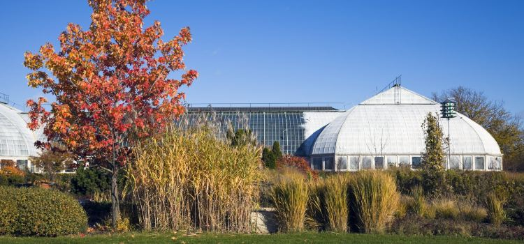 Garfield Park Conservatory1