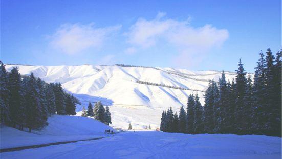 南山南滑雪場