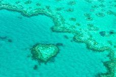 心形礁-大堡礁-doris圈圈