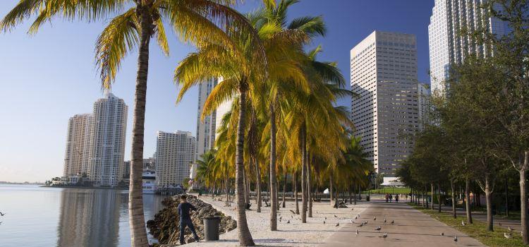 Bayfront Park1