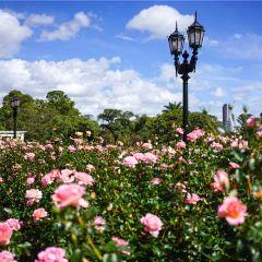 Floralis Genérica User Photo