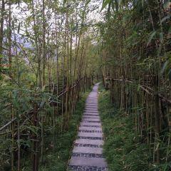 퇀커우중안둥 온천(단구중안동 온천) 여행 사진