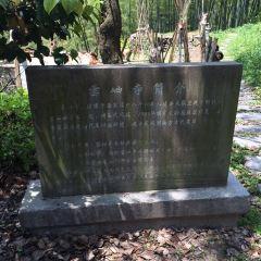 Yunxiu Temple User Photo