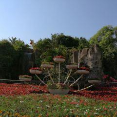 金牛嶺公園のユーザー投稿写真