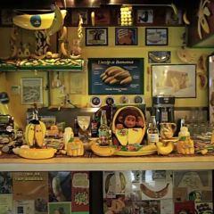 國際香蕉博物館用戶圖片