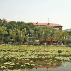 Dongli Park (Northwest Gate) User Photo