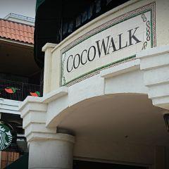 Coconut Grove User Photo