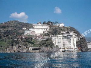 新奧卡酒店(New Akao Hotel)