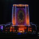 臨武國際大酒店
