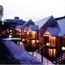鬼怒川公園酒店(Kinugawa Park Hotels)