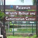 巴拉望村大酒店(Palawan Village Hotel)
