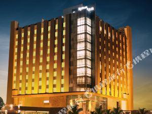 古爾岡德里NCR希爾頓花園酒店(Hilton Garden Inn Gurgaon Delhi NCR)