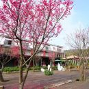 苗栗三義藝術村櫻花渡假會館(Sanyi Blossom Art Village Holiday Club)