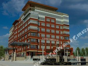 布法羅市中心/卡納爾賽德萬怡酒店(Courtyard Buffalo Downtown/Canalside)