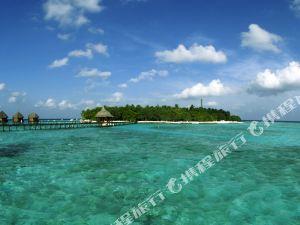 馬爾代夫藍色美人蕉度假村(Thulhagiri Island Resort and Spa Maldives)