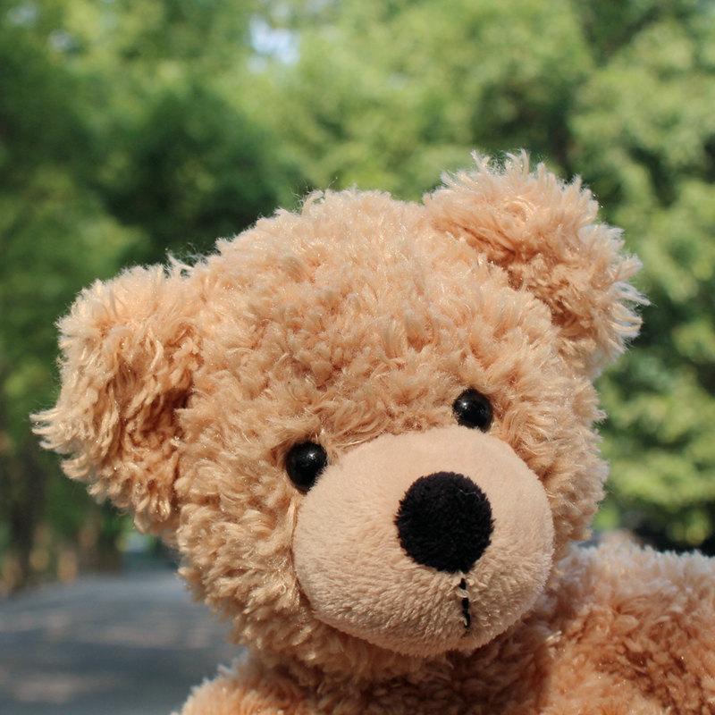 Zachry熊