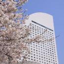 橫濱洲際大酒店(InterContinental Yokohama Grand)