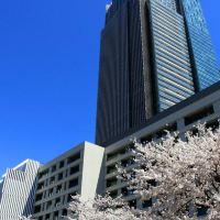 東京麗思卡爾頓酒店酒店預訂