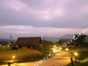 拜縣普派藝術酒店(Phupai Art Resort Pai)