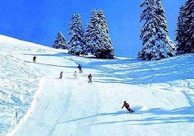 亞布力大青山滑雪場
