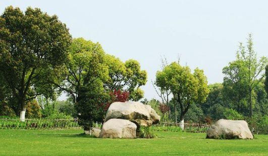 도시 생태산림공원
