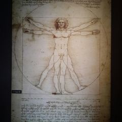 Davinci Museum User Photo
