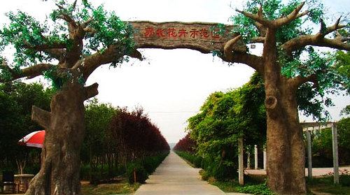 蘇北花卉示範園