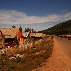 喀納斯景區用戶圖片