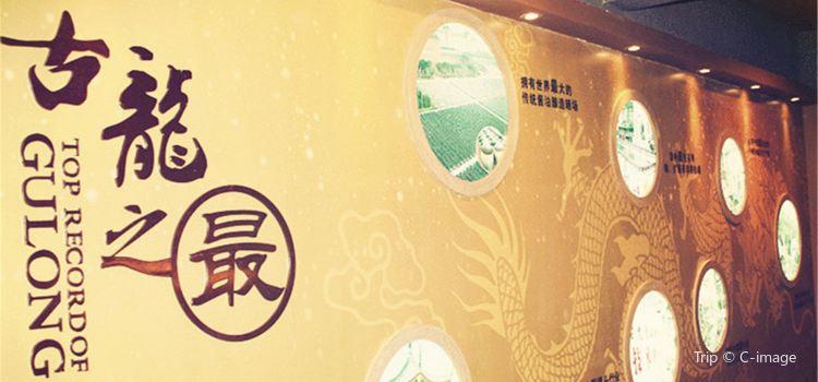 古龍醬文化園2