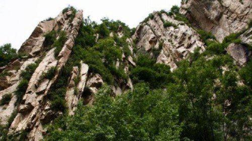 老虎頭森林公園