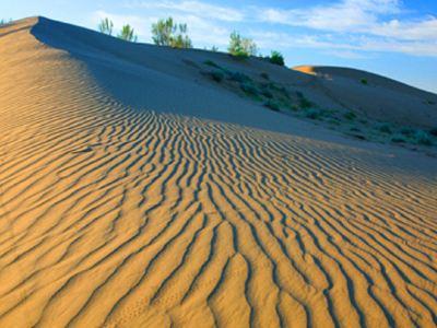 英爾力克沙漠