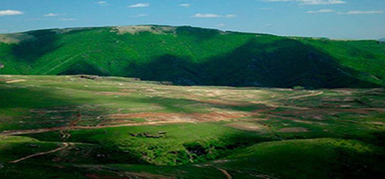 Feihu Valley · Grassland in the Sky